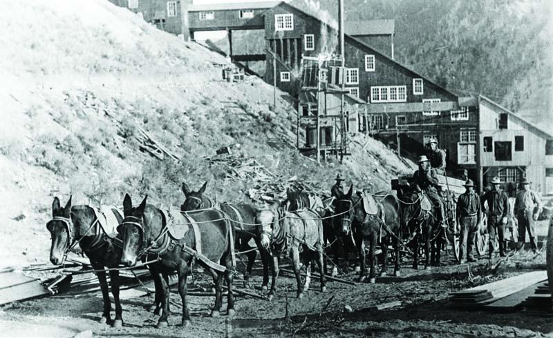 5-North-Star-Mine-_-Ketchum-Fast-Freight-wagon-ca-1885-