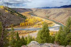 Swan Valley Autumn