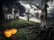 Happy Halloween theme