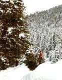 1985-tyler-and-christmas-tree-001